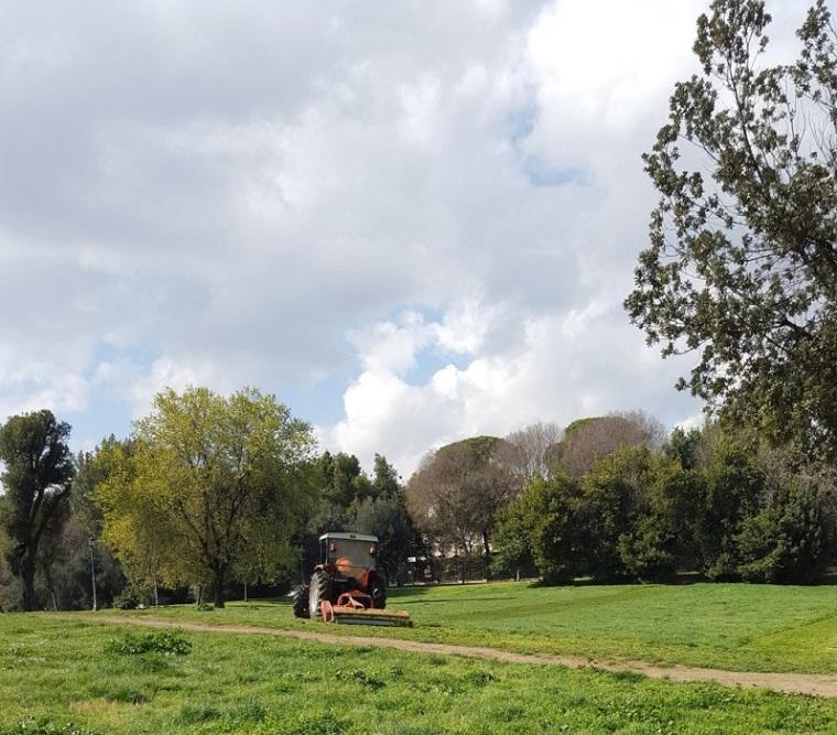 Ad una settimana dalla denuncia sui giornali di Marco Visconti, il comune interviene per lo sfalcio dell erba a Villa Chigi nel quartiere Trieste.